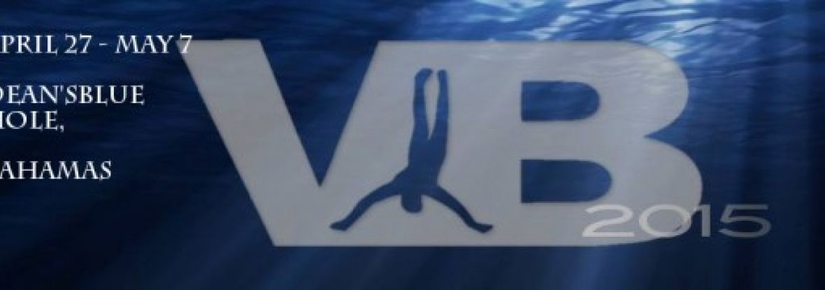 VB2015