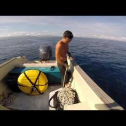 FreediveGili Diving session