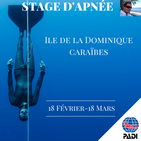 Christophe Leray PADi Freediving Instructor