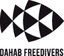 Dahab freedivers