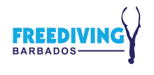 Freediving Barbados, spearfishing, AIDA