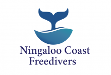 Ningaloo coast freedivers Australia