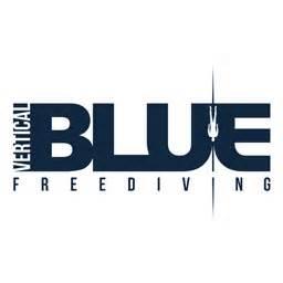 Vertical Blue 2016